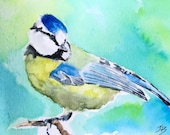 Giclee print of Blue Tit