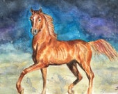 Giclee print of 'Arabian Night'