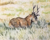 Giclee print of 'At Rest'