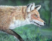 Top quality giclee print of 'On the Hunt' a fox painting by artist Janet Bird