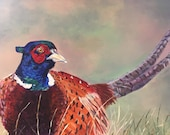 Top quality giclee print of 'Keeping Watch' a pheasant painting by artist Janet Bird
