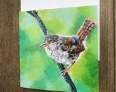 Pretty wren greeting card by UK artist Janet Bird