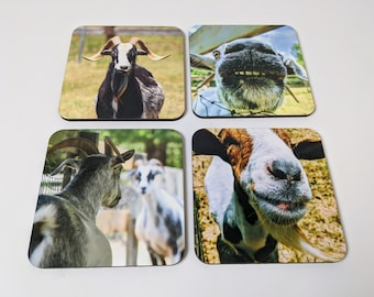 animal photography games Horse tail swinging horse lovers birthday gifts South Dakota Deck of cards animal lovers hobbies poker