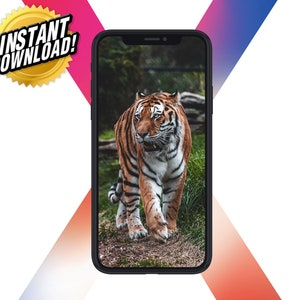 Iphone 11 Pro Hd Wallpaper Tiger Wallpaper Iphone Iphone Etsy