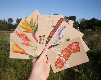 California Postcard Set of 8, Flower and Animal Illustrations, Natural Textured Recycled Kraft Paper