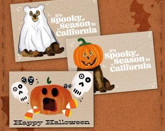 State of California Halloween Card Pack, Skull, Cute Ghost, Pumpkin Jack o Lantern Halloween Invite, Spooky Season Happy Halloween Postcard
