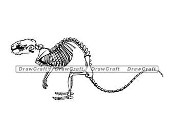 Rat Skeleton Svg, Rat Svg, Rodent Svg, Exterminator Svg, Rat Design Svg, Rat Cut Files, Rat Files for Cricut, Rat Clipart, Png, Dxf, Eps