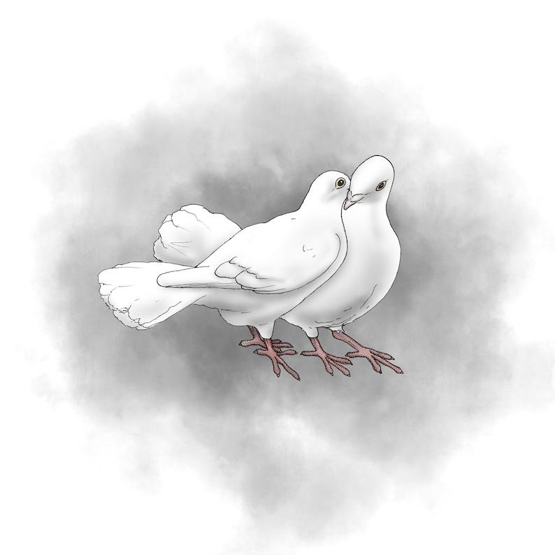 Dove Love Digital Print