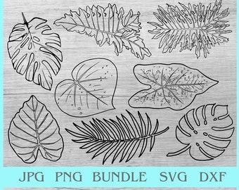 Hawaii sublimation Instant Download Palm Leaves Tropical Aloha Sublimation Design Tropical Arrangement Watercolor Fronds Cricut file