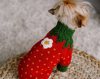 Hand knit small dog strawberry costume Wool knit yorkshire terrier jumper Red cat sweater