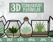3D Terrarium Mandala SVG, 3D Mandala SVG, Succulent SVG, 3D Succulent, Papercut Succulent Svg, layered succulent, terrarium svg, layered