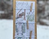 Greylock Glen Scavenger Hunt Digital