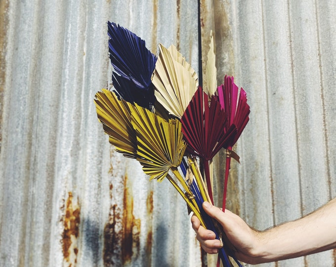 Spear Palm - Preserved Forever Flowers