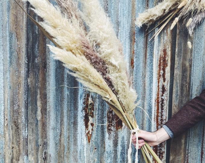 Pampas Grass   Dried Floral Arrangement
