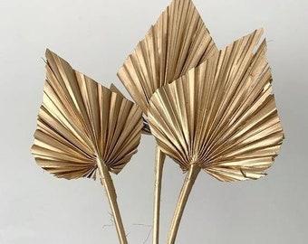 Gold Mini Palm Spear Stems | Dried Palm Leaf | Cake topper diy | centerpiece decor/dried floral arrangements/Natural Palm Spear/Tropical diy