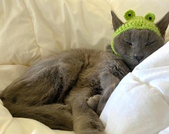 Crochet Frog Cat Hat