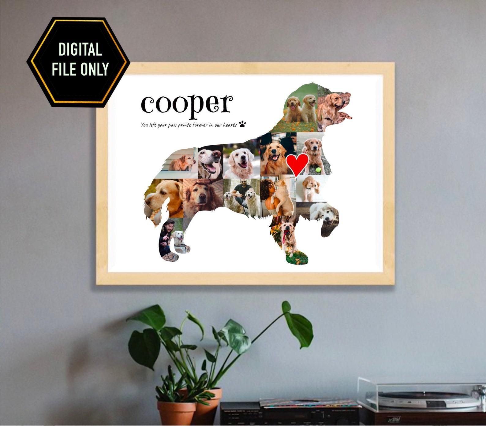 Golden Retriever Photo Collage