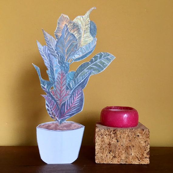 Immortal Houseplant, illustration by Made by Nomela.