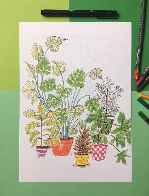 Plants Ahoy! A4 Colour Print