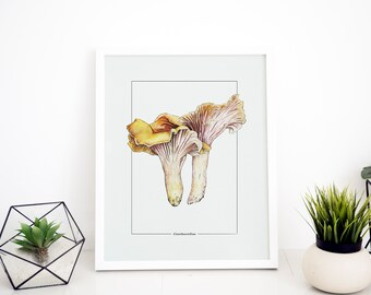 "Chanterelle Original Watercolor Art Print 9"" x 12"""