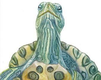 Red-Eared Slider Watercolor Portrait Print - 11x14