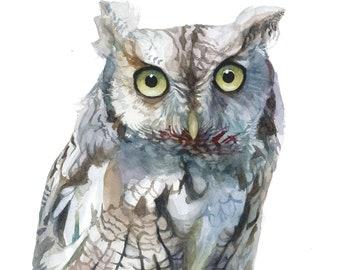 Eastern Screech Owl Watercolor Portrait Print - 11x14