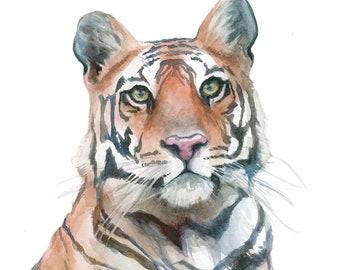 Bengal Tiger Watercolor Portrait Print - 11x14