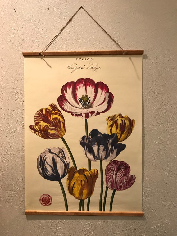 French Tulip Vintage-Inspired Wall Art