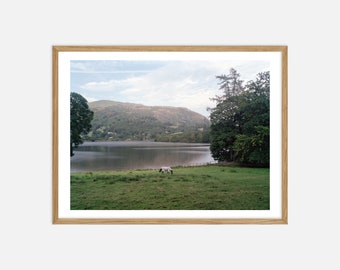 Fine Art Landscape Photography - Horse in the Lake District - Archival Pigment Print