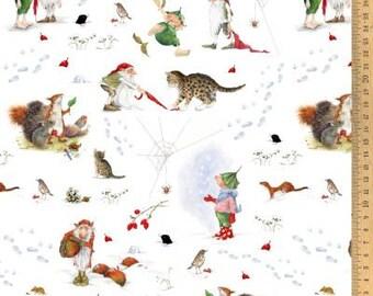 Acufactum cotton fabric winter with Giesbert 145 cm wide, 0.5 m design Daniela Drescher