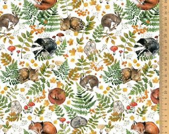 BW fabric sleeping animals 145 cm wide Daniela Drescher Acufactum