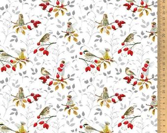 Acufactum cotton fabric rosehip guests 145 cm wide 0.5 m Design Daniela Drescher