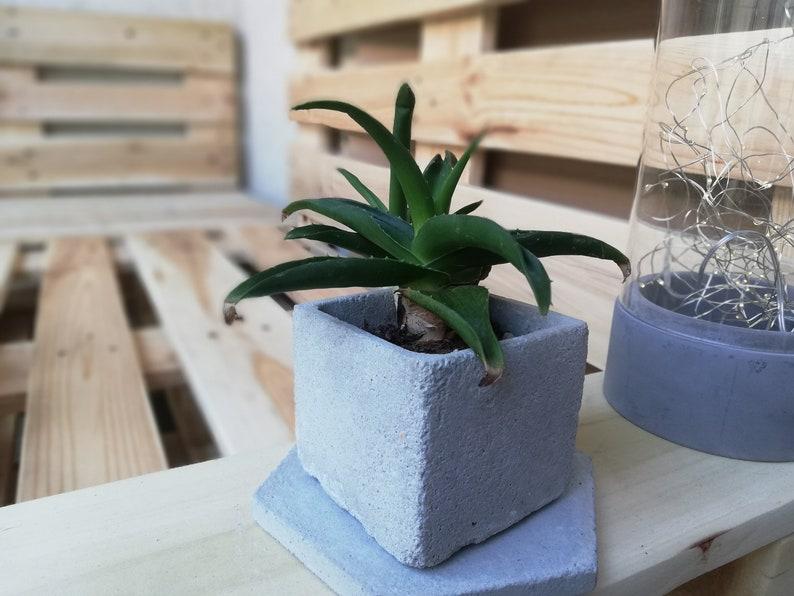 Modern Concrete Plant Pot  Small Concrete Planter  Planter with Drainage Hole