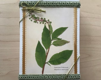 Herbs (Selection 2) Blank Cards