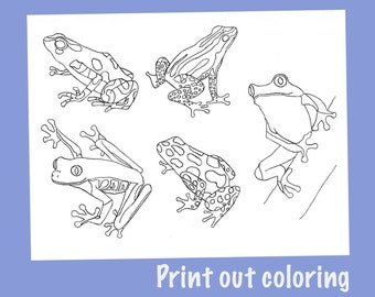 8x11in A4 rainfrog meeting a smaller curiously energetic and spider-like rainfrog 21x30cm Frog poster painting