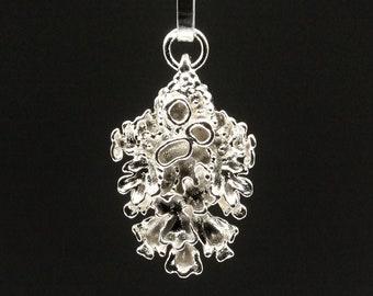 Silver pendant - Cladonia I