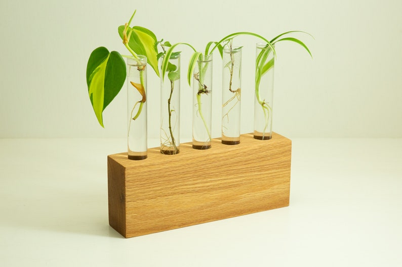 gardener gift Single Stem Vase Indoor Plant Stand plant lover gift Walnut Propagation Station Hydroponic Vase gift for mom