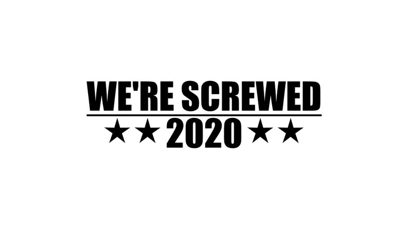 We're Screwed 2020 Decal image 0