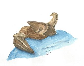 Long Eared Bat watercolour postcard