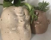 Witchcraft head planter