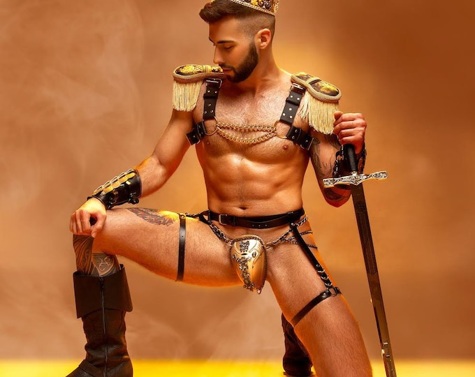 Biothane Black and Gold Chain Harness With Epaulettes