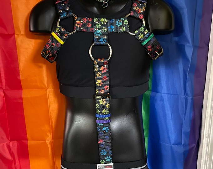 Full Body Rainbow Pup Harness With Cock Ring