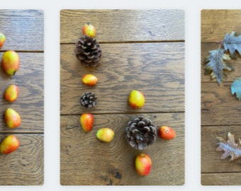 Autumn Number Cards 1-10
