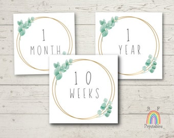Baby Monthly Milestone Cards, Printable Watercolor Gender Neutral Month Sign, Set of 25, Greenery, Instant Download Photo Prop, Newborn Baby