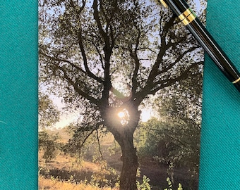 Original photo greeting card - gold hearted oak (borderless) with envelope.  Gorgeous unique photography, perfect for any occasion.