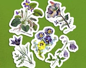 Old Fashioned Flowers Sticker Set, 5 Victorian Botanical Floral Vinyl  Stickers Columbine Violets Pansies Anemone, Small Gift