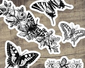 Victorian Moths and Butterflies Sticker Set  | Vintage Flowers, Butterfly, Moth Floral Vinyl Stickers, Black and White, Small Gift