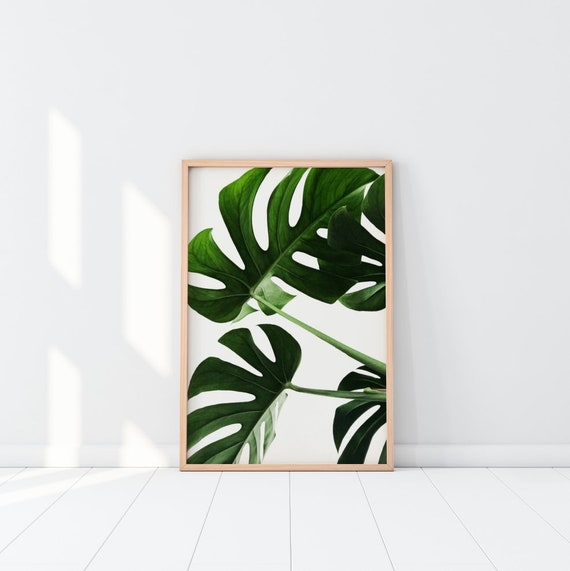 Shop Monstera Tropical Leaf Wall Print  Home Decor Botanical Leaf from Etsy on Openhaus