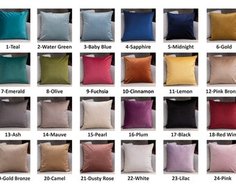 Velvet Throw Pillow Cover, Velvet Pillow Cover, Velvet Throw Pillow, Throw Pillow Cover, Pillow Cover, Velvet Pillow, Velvet Cushion Cover