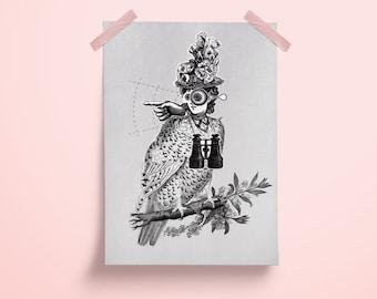 Poster, A4 Print, Black White, Collage, Bird, Bird, Illustration, Art, Design